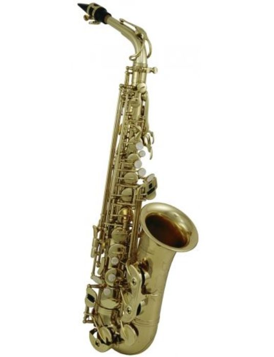 Roy Benson AS 302 saksofon altowy